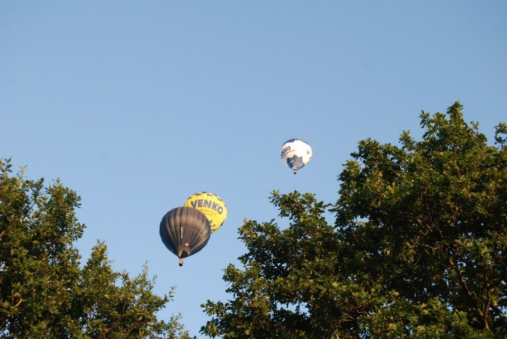 fly in ballon