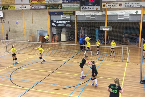 Volleybalvereniging