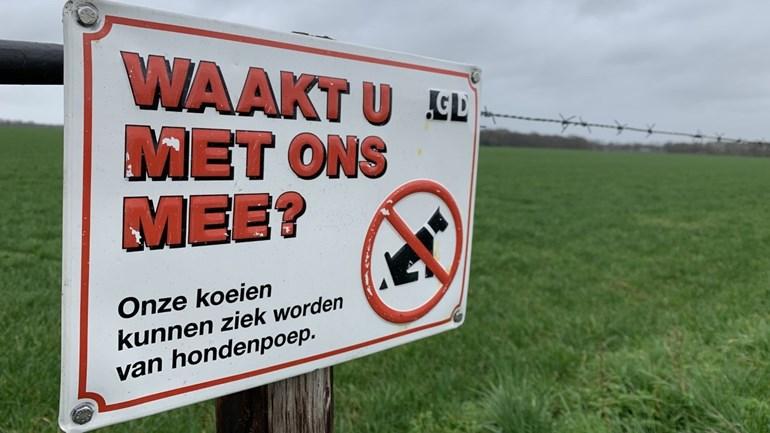waarschuwingsbord hondenpoep