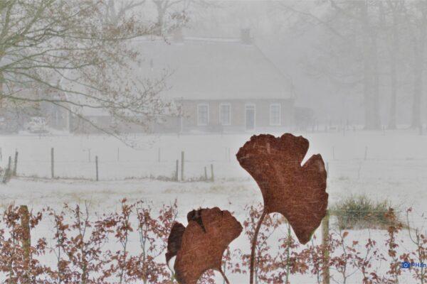 Sneeuw in Gees 7 februari 2021